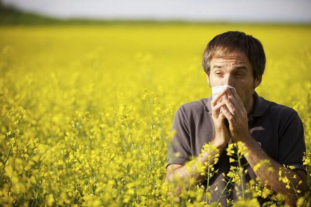 Alergia estacional